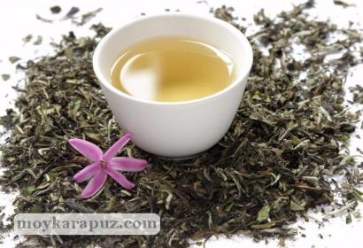 Белые сорта чая