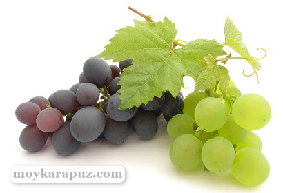 Гроздь белого и черного винограда