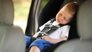 Ребенка укачивает в машине. Причины и что делать.