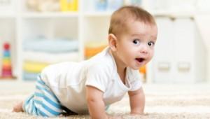 Ребенку 7 месяцев, его развитие и питание